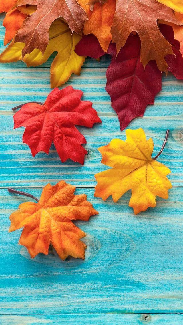 17 best ideas about autumn iphone wallpaper on pinterest