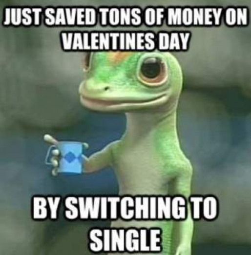 Just saved tons of money on valentines day by switching to single – geico insura…
