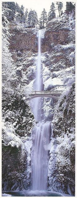 . Oregon  - Multnomah Falls, Winter I have never seen a winter picture of this before. Beautiful!!!