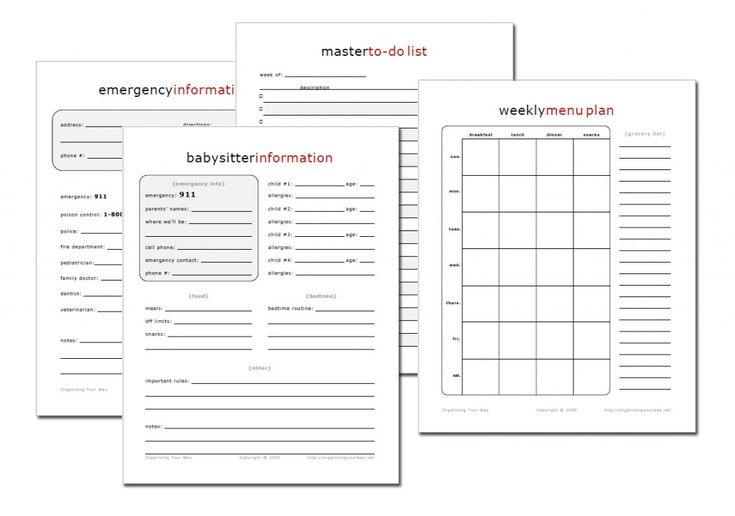 More Free Printables! :)  Over 200 different kinds for a home management notebook!