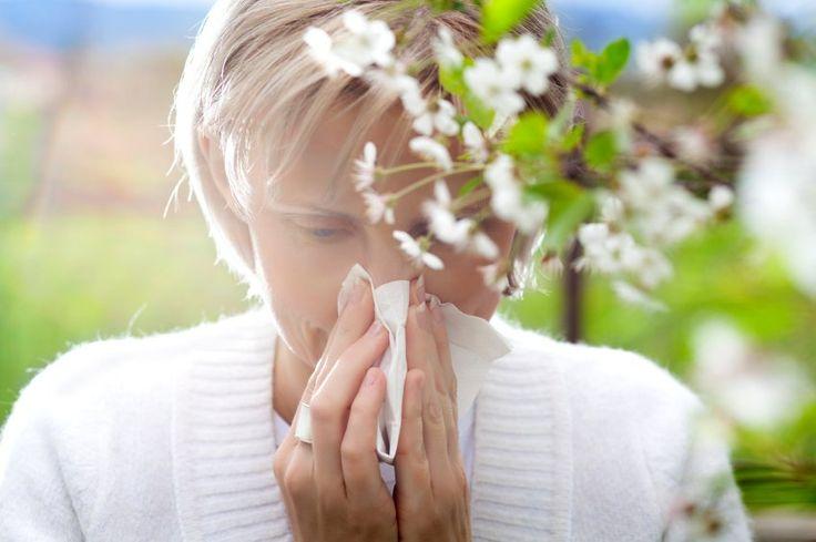 Top Essential Oils For Springtime Allergies