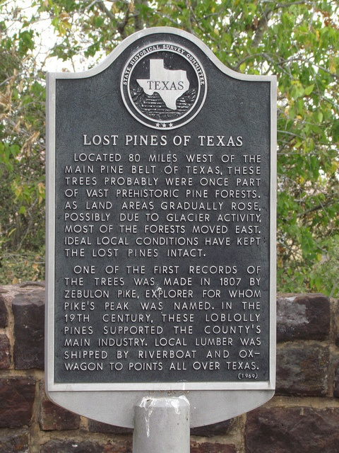 Lost Pines of Texas