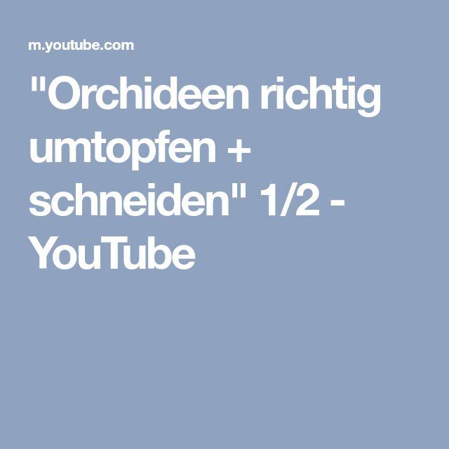 """""""Orchideen richtig umtopfen + schneiden"""" 1/2 - YouTube"""