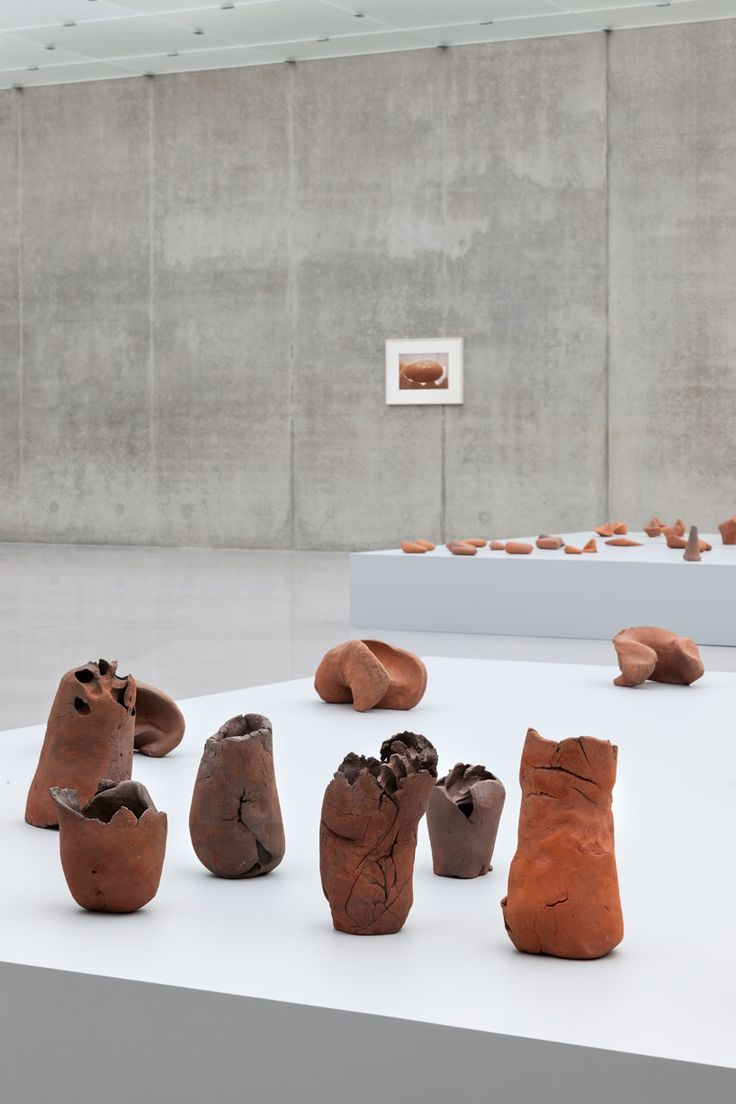 gabriel orozco: natural motion at the kunsthaus bregenz
