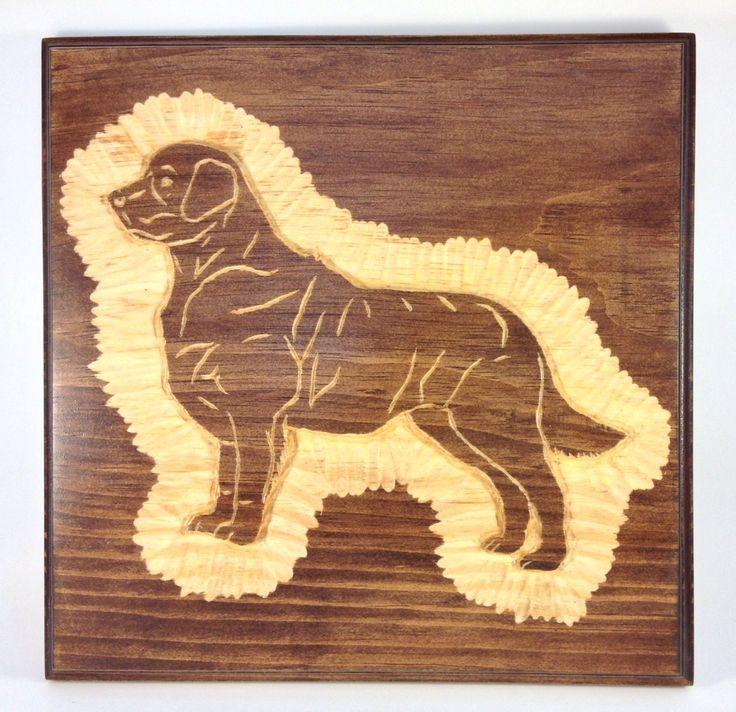 Dog golden retriever labrador canine goldy wood