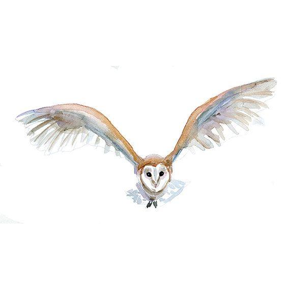 Original Flying Barn Owl watercolor painting   Zen by Zendrawing