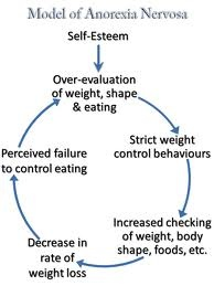 how is anorexia caused essay The role society plays in the existence of eating disorders home » co-occurring disorders and treatment » eating disorder treatment » the role society plays in the existence of eating disorders popular opinion has long held that social and cultural factors lie at the root of the mental illness that is characterized by eating disorders.