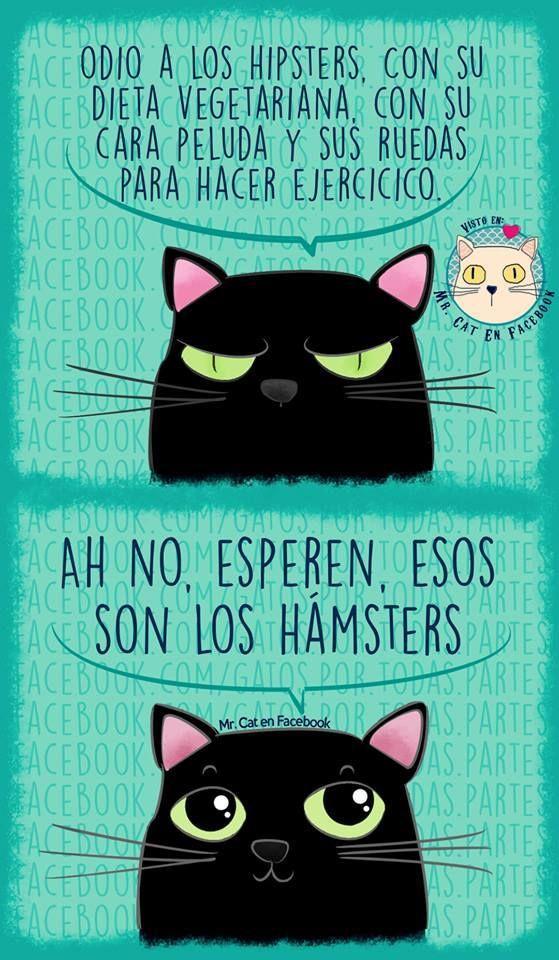 Mr. Cat es una página de Facebook donde suben ilustraciones que todo cat lover amará. Estas son algunas de ellas que podrían sacarte una risa si eres un verdadero cat lover. También puedes ver: 21 Gatos que se dieron cuenta que los llevaron al veterinario —