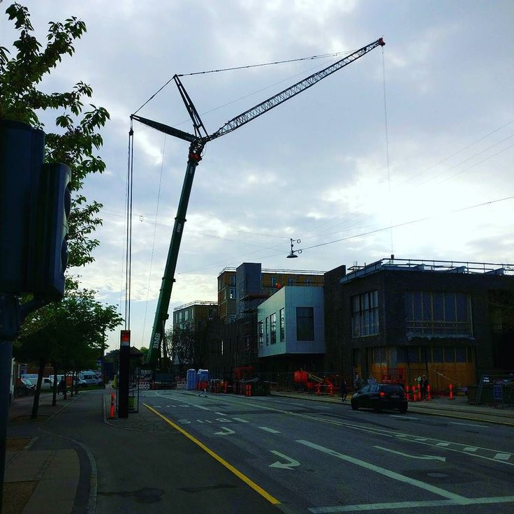 That's a big #crane #notabird