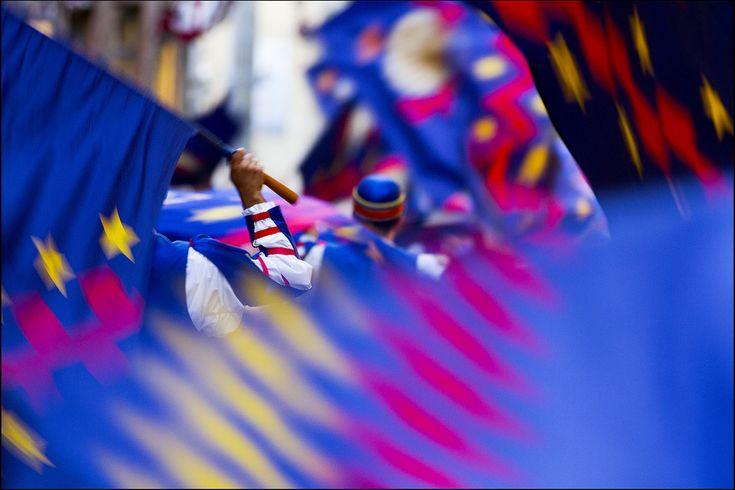I colori del Nicchio - Foto di Lord Scheggia su Flickr - https://www.flickr.com/photos/mcerreia/8560659122 - #Siena #PalioDiSiena #ContradaDelNicchio