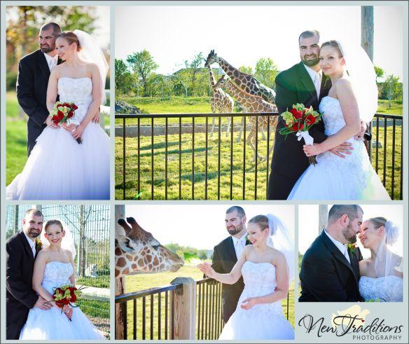 Wedding Venues Wichita Ks: 1000+ Images About Weddings @ Tanganyika Wildlife Park On
