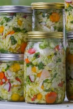 The best way to get the benefits of probiotic bacteria naturally is to make your own fermented foods. Here's how Dr. David Williams make fermented vegetables.