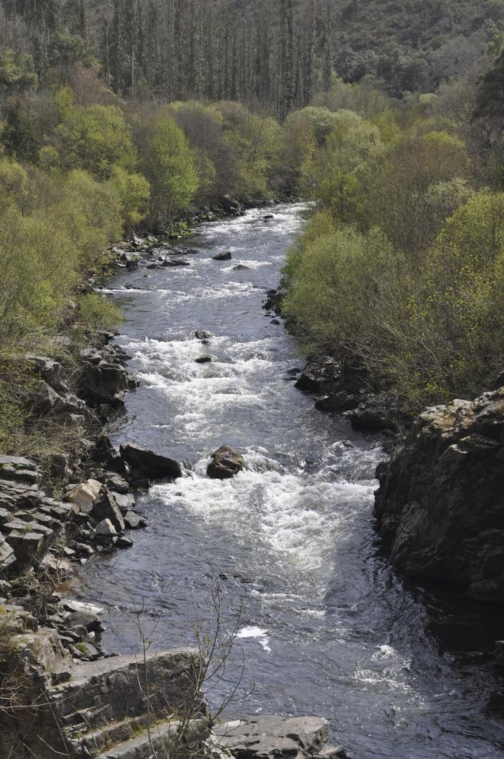 El río Ulla a su paso por A Pena  Ulla River as it passes through A Pena