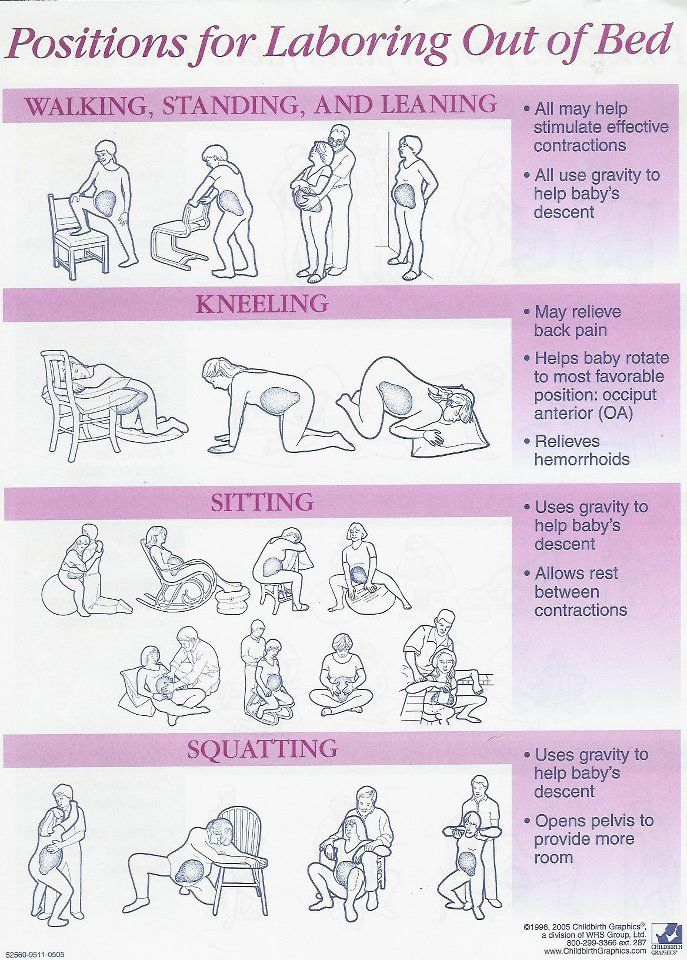 best sex positions for first trimester pregnancy in Hawaii
