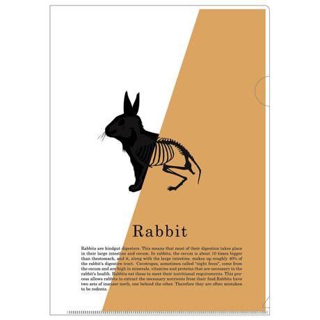 紙を入れると動物たちの絵柄が変わるクリアフォルダを東京のデザインメーカー「PlasticArts」よりお届け。 何もいれない状態だと動物のシルエット、中身をいれるとその動物のスケルトンが浮き上がるユニークなアイテムです。  サイズW220 ×H310mm