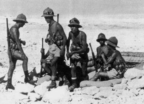 THE DESERT'S LIONS | SOFREP ......... ''The October 23, 1942 sand dune of North Africa witnessed one of the most heroic acts of World War II: the resistance of the Folgore Brigade to British 8th army's offensive.....''..... http://sofrep.com/38283/deserts-lions/