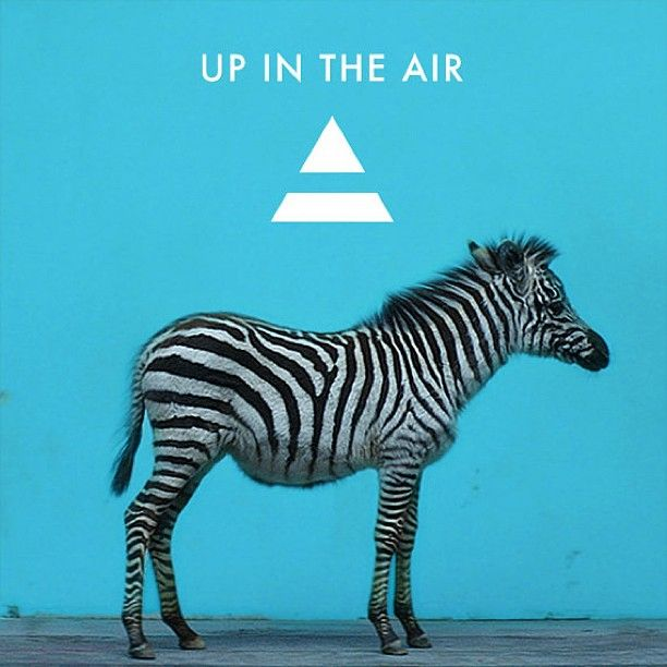 "Remember Speedy? Check him out on the single art for ""UP IN THE AIR""!"