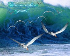 Счастливого пути! - Открытки пожелания - Анимационные открытки картинки