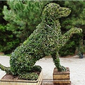 French Formal Garden | French Style Gardens | Country Home Decorating Tips