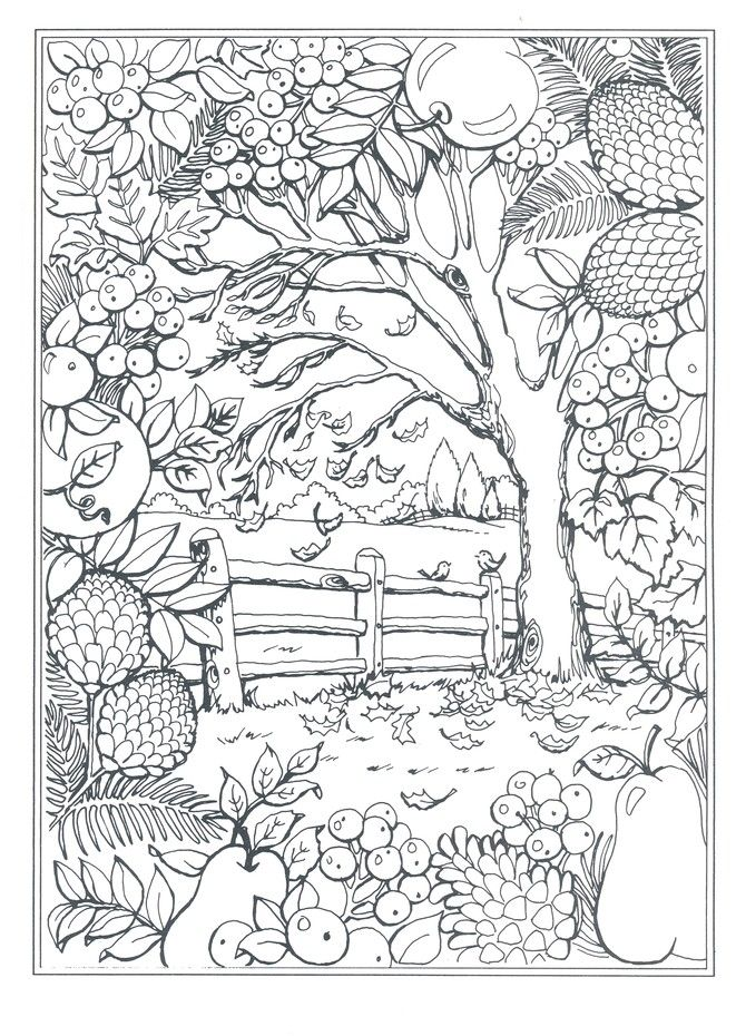 Autumn Scenes Coloring Book Forest Coloring Book, Coloring Pages, Spring Coloring  Pages