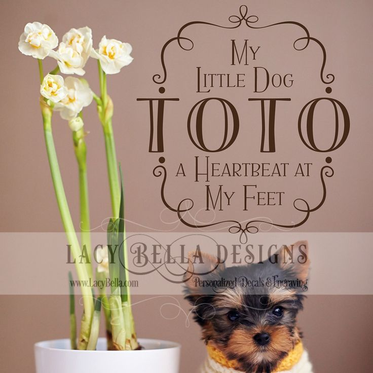 Best Pets Images On Pinterest Vinyls Pet Quotes And Stickers - Custom vinyl wall decals dogs