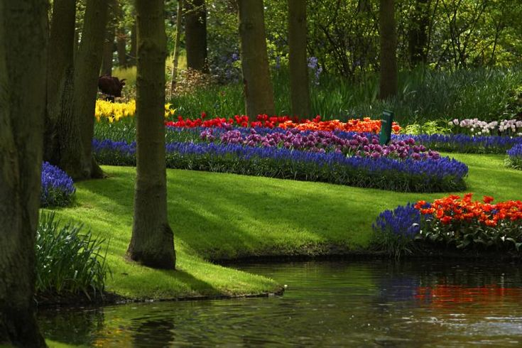 Beautiful park with flowers