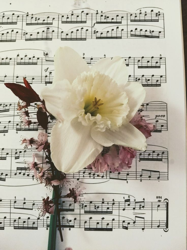 Classical Music Inspired by Easter Part 1 | Beautiful Music