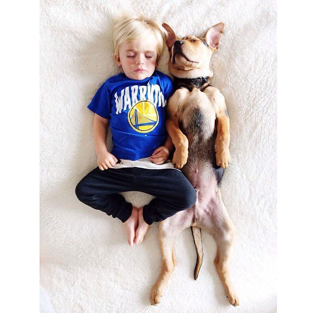 Child and his dog