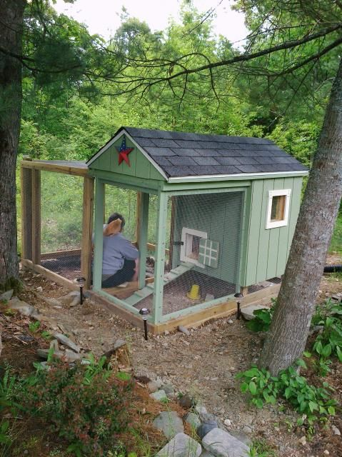 """I used""""The All In One"""" plan from Chicken Coops for DUMMIES."""