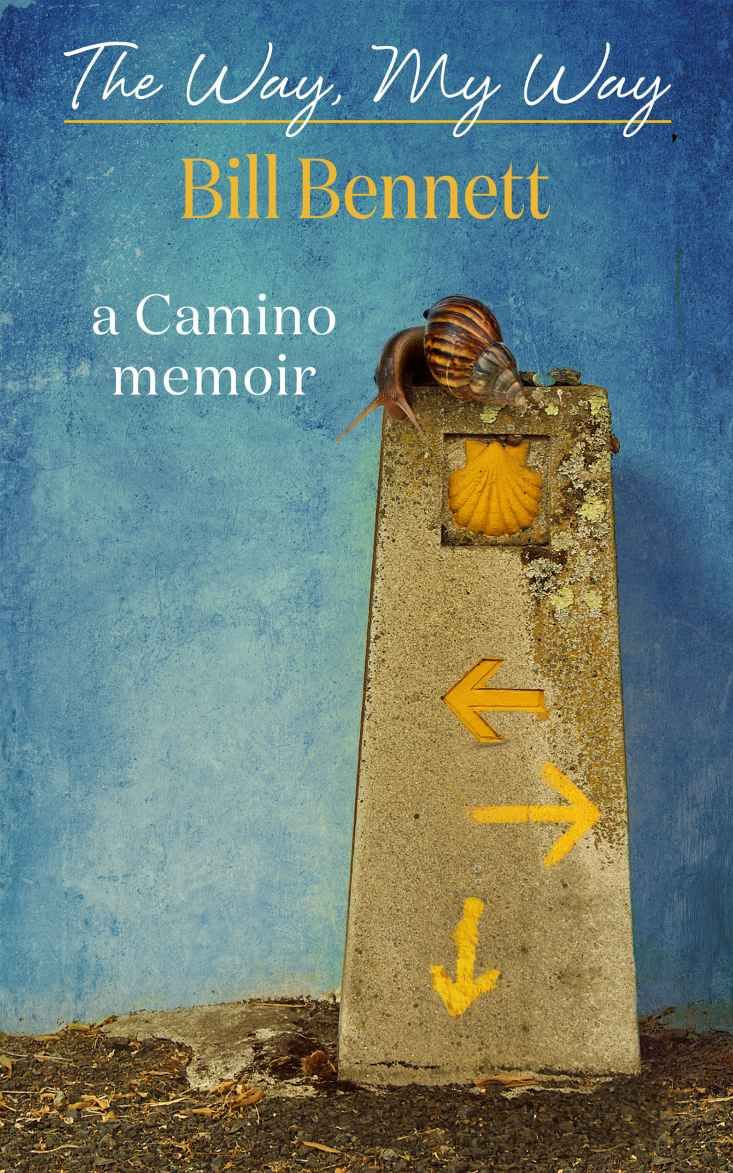 222 best camino books images on pinterest pilgrimage box sets amazon the way my way ebook bill bennett jennifer cluff fandeluxe PDF