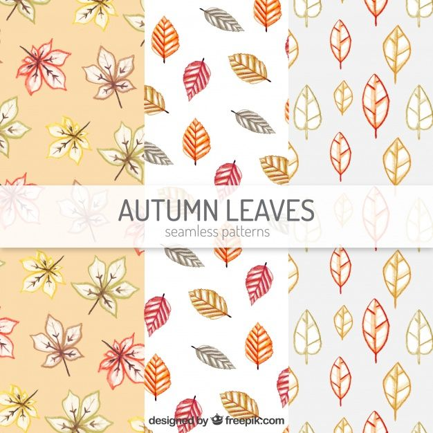 Free vector Watercolor autumn patterns with leaves and flowers #22545