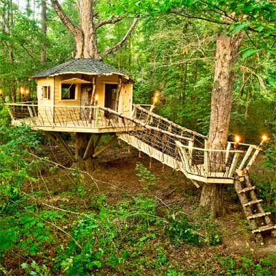 woman transforms cubicle into holiday themed log cabin.htm 17 best images about tree house on pinterest treehouse hotel  tree house on pinterest