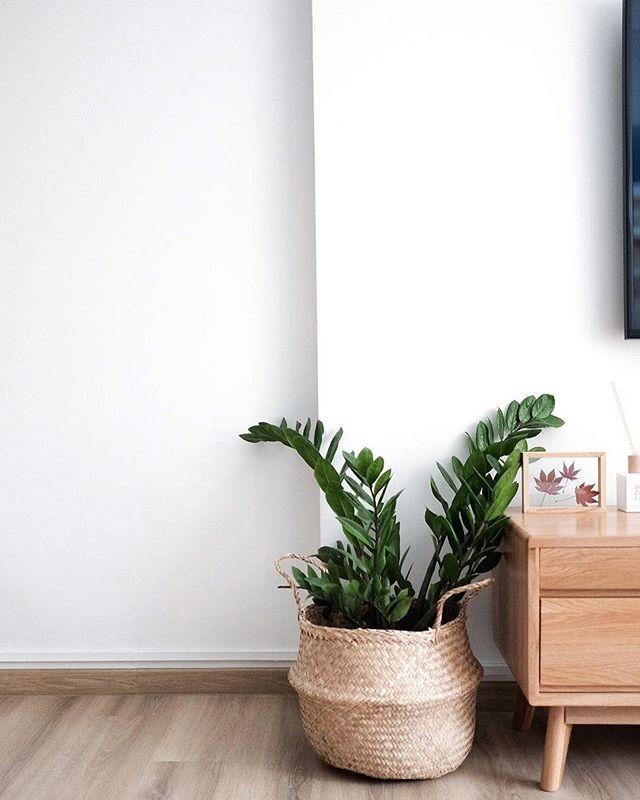 Ikea Flower Pots Singapore