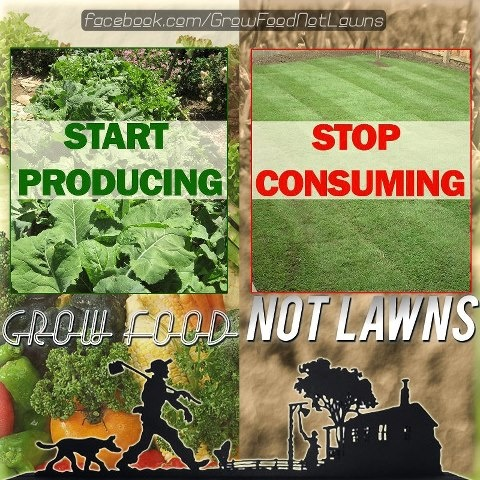 Grow Food Not Lawns---excellent concept