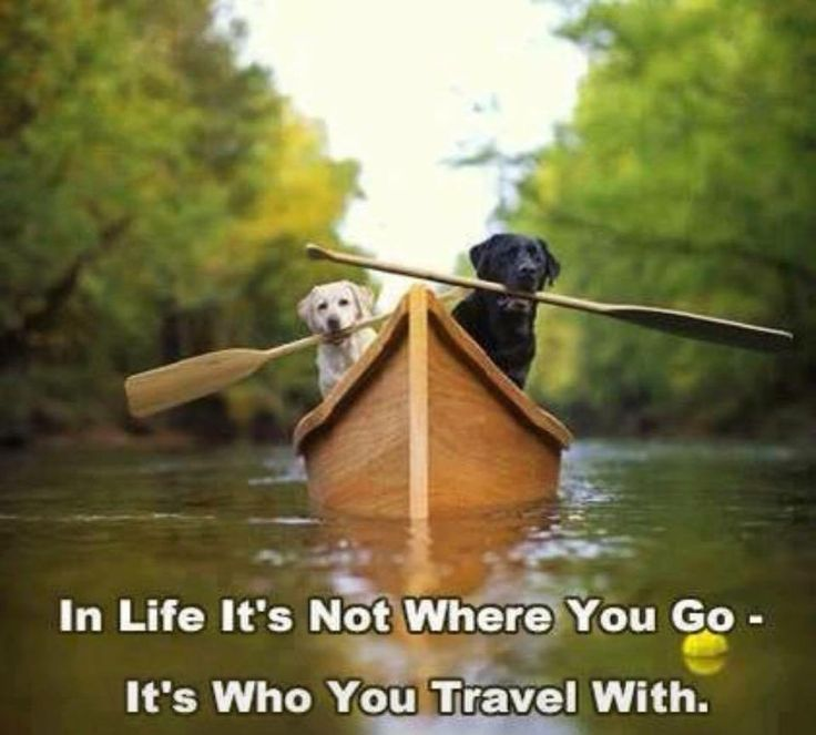 Image result for travel with friends quotes