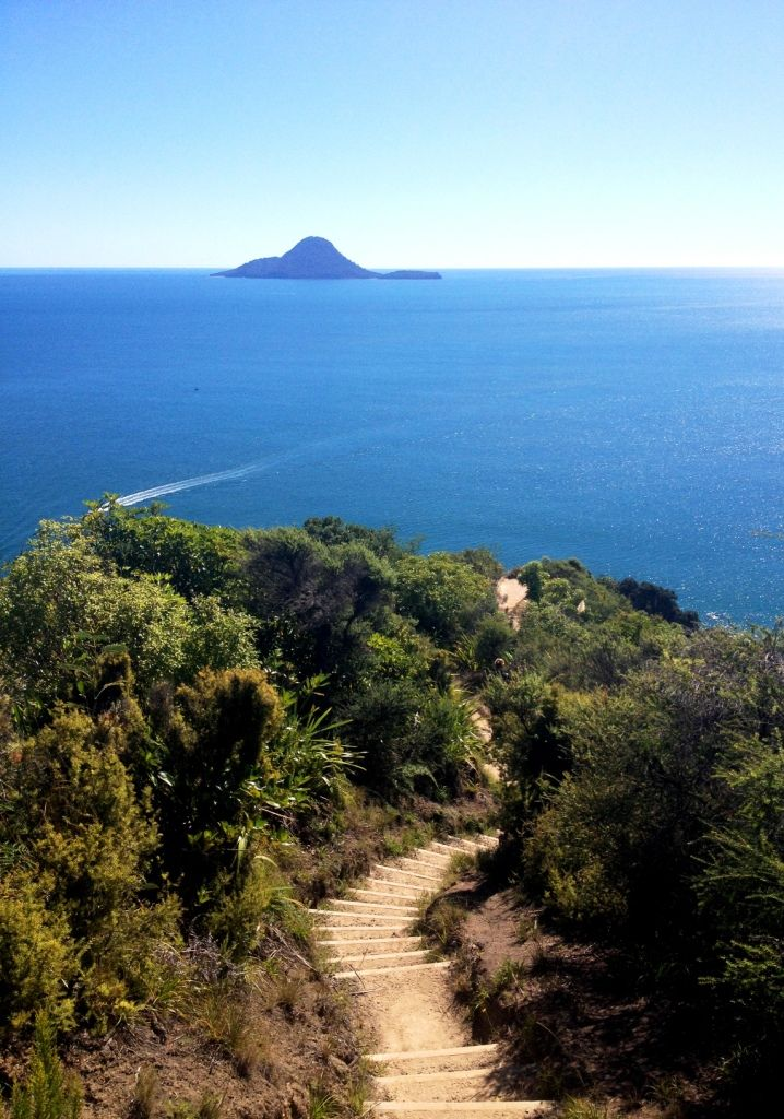 Küstenwanderweg bei Whakatane | SnoopyA | #Neuseeland