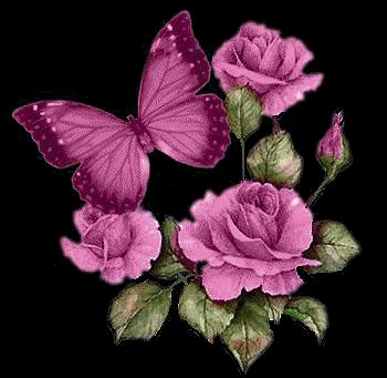 Glowing Roses & Butterfly Pictures, Photos, and Images for Facebook, Tumblr, Pinterest, and Twitter