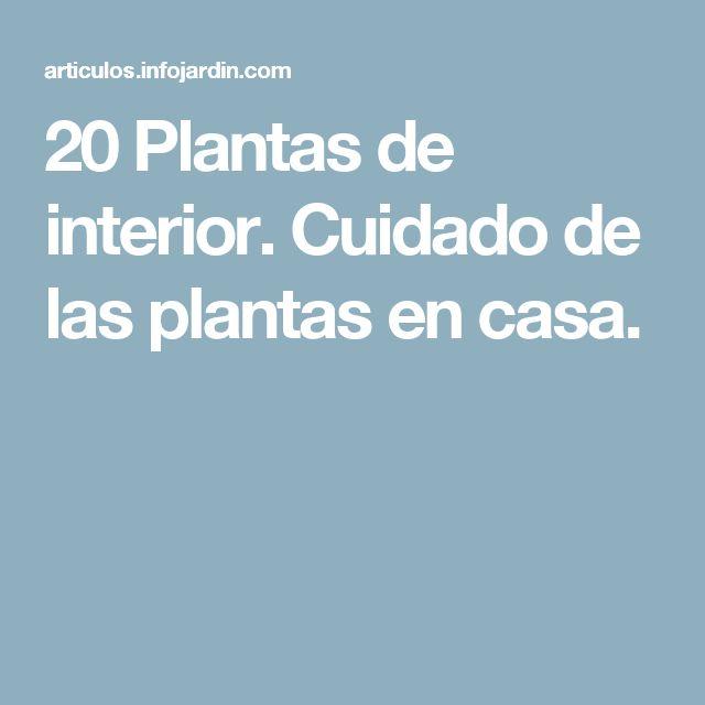 20 Plantas de interior. Cuidado de las plantas en casa.
