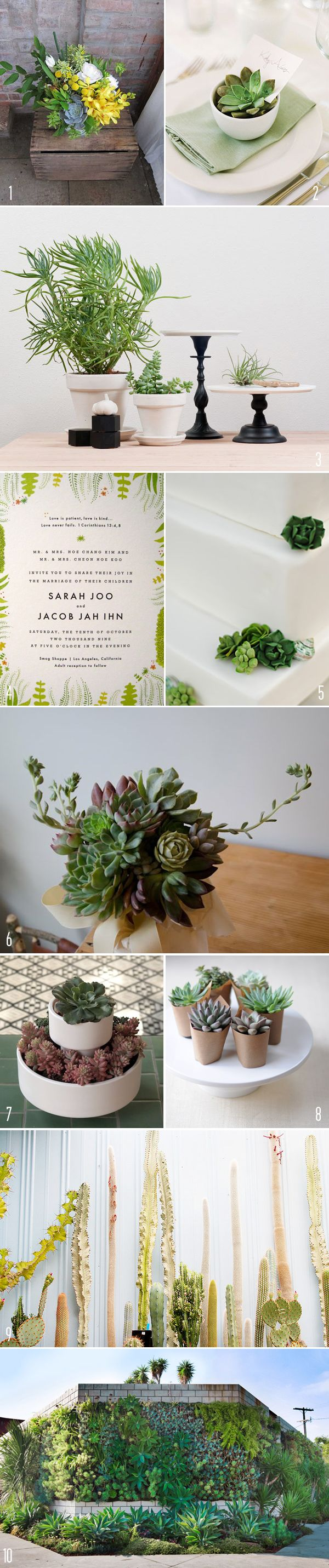 Inspiration for decorating with succulents (sounds weird, looks awesome, especially for summer).