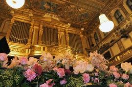 Musikverein, Goldener Saal, Blumenschmuck für das Neujahrskonzert vor der Orgel