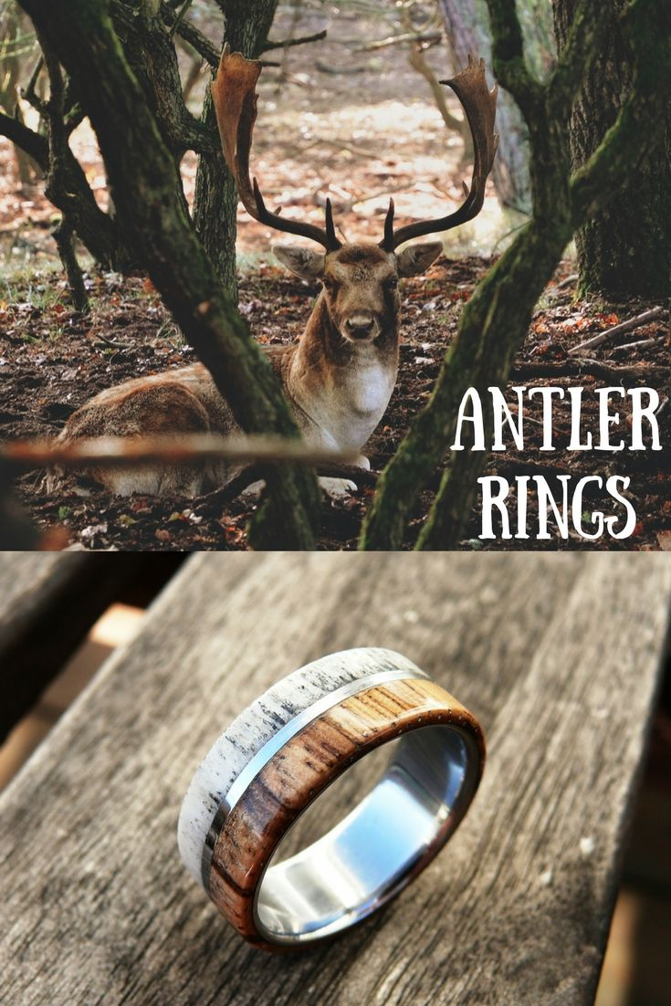 Mens antler rings! These wood antler rings make the perfect mens wedding band. Made from 100% genuine fallen deer antlers. These wood antler wedding bands make the most unique mens ring.