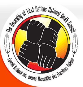 The Assembly of First Nation Youth Group. http://www.afnyouth.ca/article/assembly-of-first-nations-national-youth-council-1.asp  This council is for affirming rights, equality and creating leadership among young FNMI. It works to positively influence future generations.