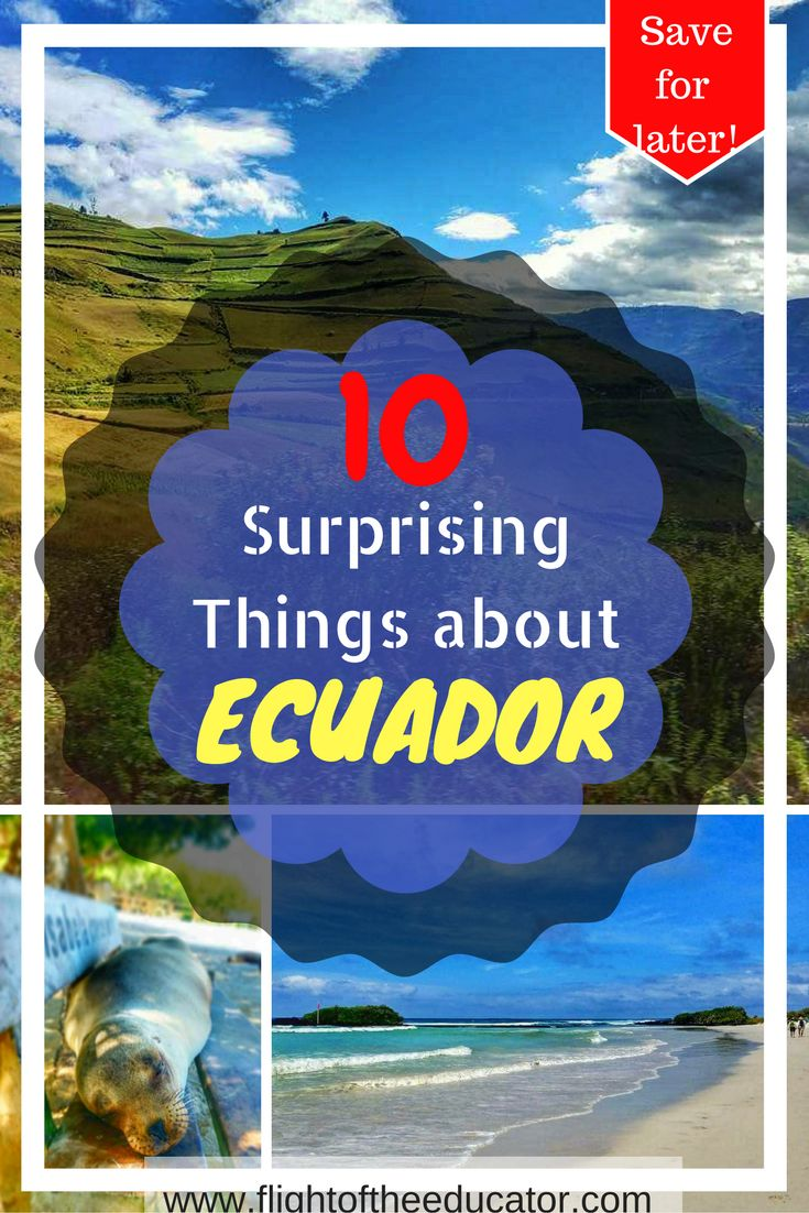 Ecuador was a surprising place! Here's some of the fun facts that I learned!