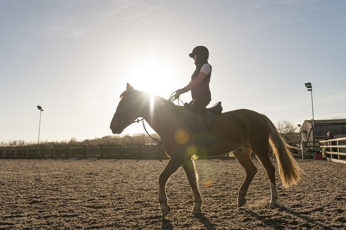 """Kate & Theakston "" by Steven Barrington Smythe -  #fstoppers #Commercial #equestrian #Horse #Riding #Stables #Paddock #sun #Sunlit #backlit #halo"
