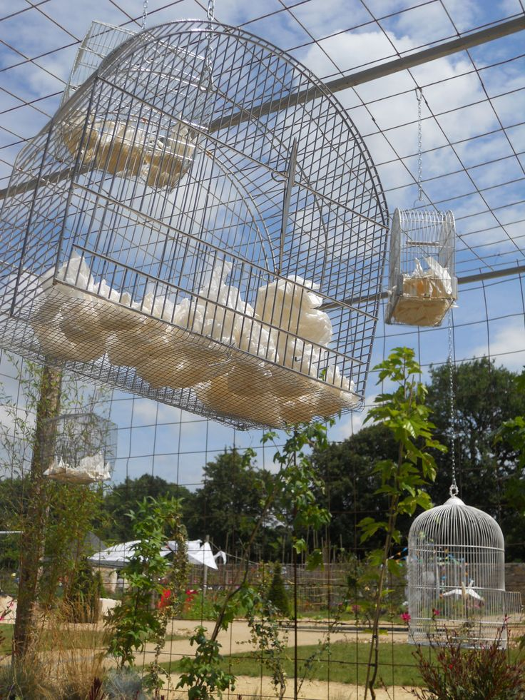 Cages dans une cage