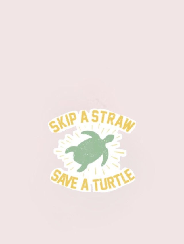 Save The Turtles Turtle Background Turtle Wallpaper Pets