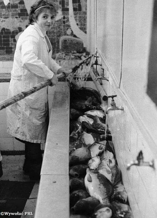 Sklep rybny Rynek Kościuszki