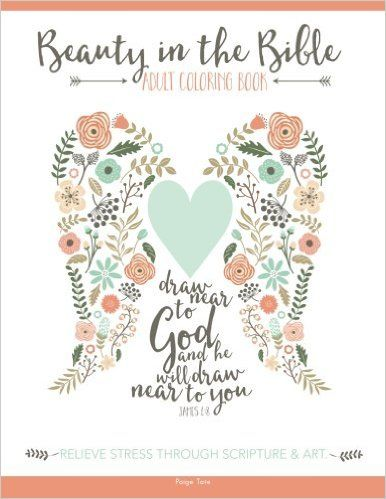 Amazon Beauty In The Bible Adult Coloring Book 9781941325223