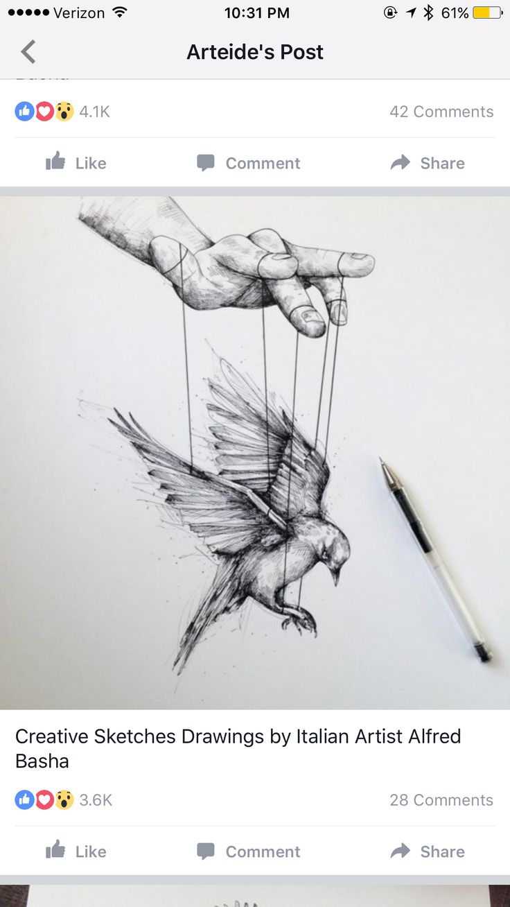 Creative Sketches Drawings by Italian Artist Alfred Basha Hand puppet bird flight