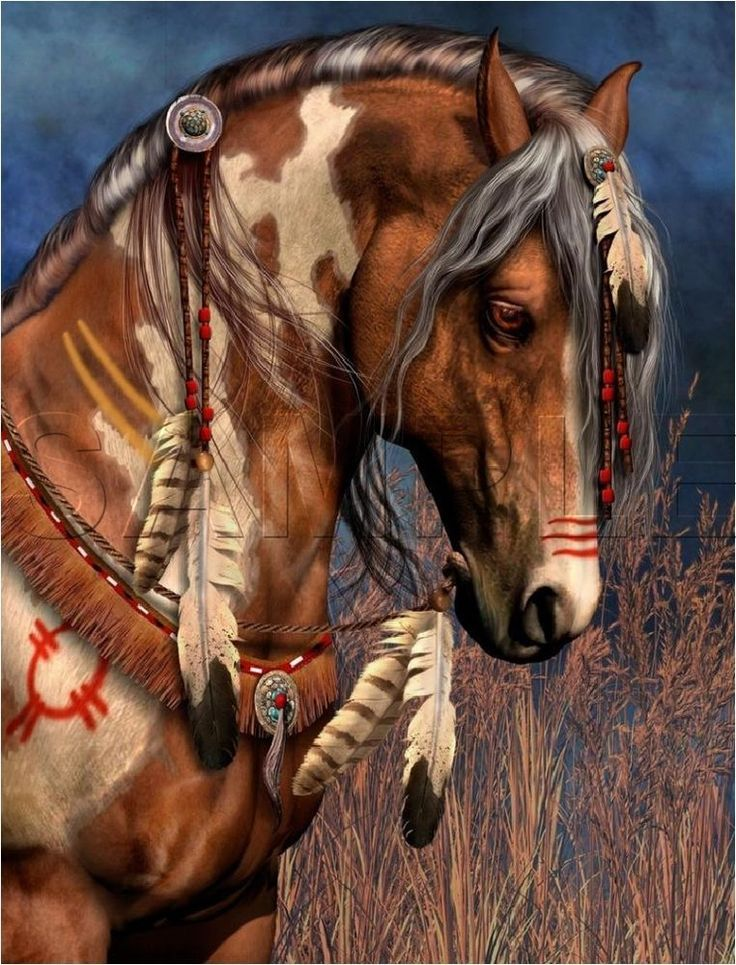 "NATIVE SPIRIT PAINTED WAR HORSE FEATHERS INDIAN VINTAGE ""CANVAS* ART PRINT   #Vintage"